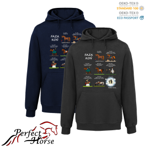 PERFECT HORSE Bluza damska Cartoon Faza