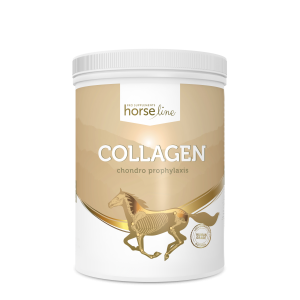 HORSELINE Collagen Kolagen dla koni 800g 24h