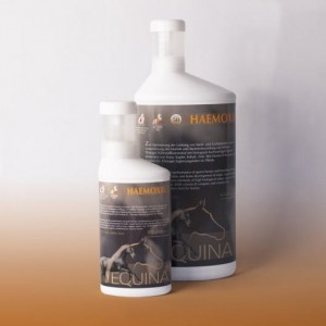 EQUINA Haemoxil - koncentrat witaminowy 250ml 24h